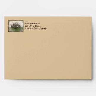 Apple Tree in Bloom Envelope