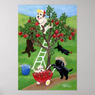 Apple Tree Labradors Artwork Poster