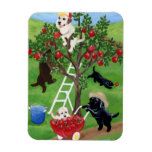 Apple Tree Labradors Flexible Magnets