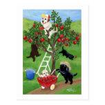Apple Tree Labradors Post Card