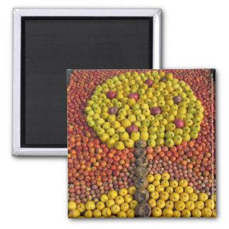Apple Tree Magnet