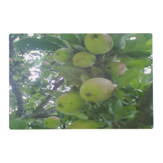 apple tree placemat
