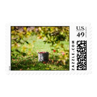 Apple tree postage