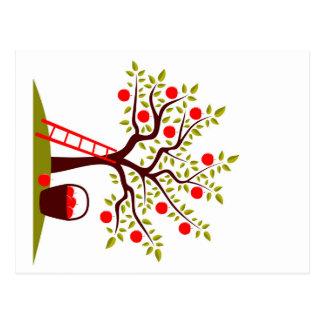 Apple Tree Postcard