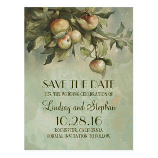 Apple tree rustic save the date postcards