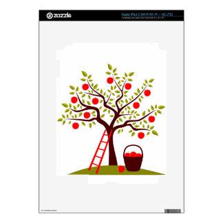 Apple Tree iPad 3 Decal