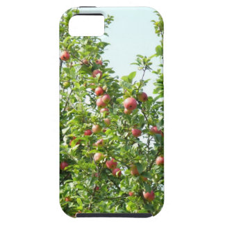 Apple Trees iPhone 5 Covers