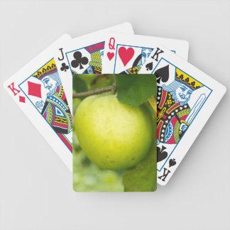 Apple verde en una rama de árbol barajas de cartas