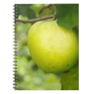 Apple verde en una rama de árbol cuaderno