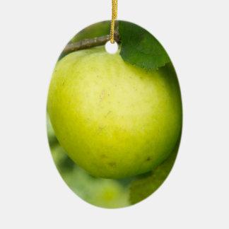 Apple verde en una rama de árbol ornamento para reyes magos