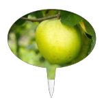 Apple verde en una rama de árbol figura de tarta
