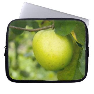 Apple verde en una rama de árbol funda computadora