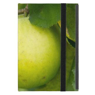 Apple verde en una rama de árbol iPad mini cárcasas