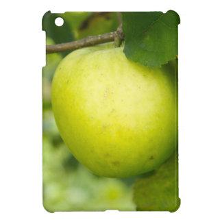 Apple verde en una rama de árbol iPad mini carcasas