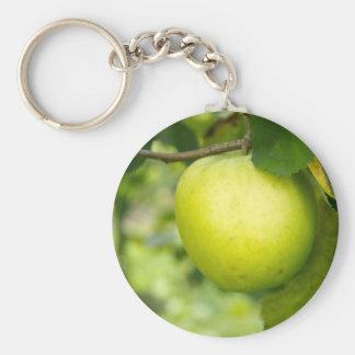 Apple verde en una rama de árbol llavero