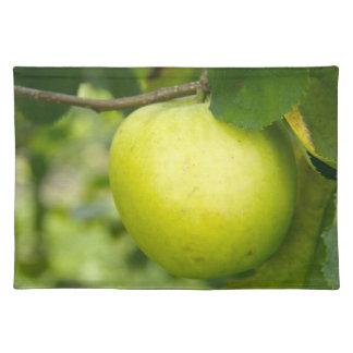 Apple verde en una rama de árbol manteles individuales