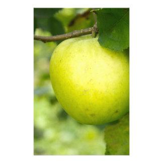 Apple verde en una rama de árbol papeleria
