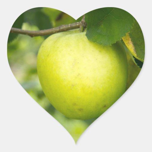 Apple verde en una rama de árbol colcomanias de corazon personalizadas