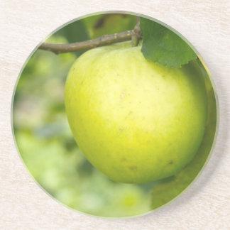 Apple verde en una rama de árbol posavasos manualidades