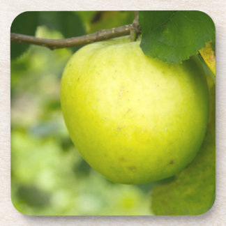 Apple verde en una rama de árbol posavaso