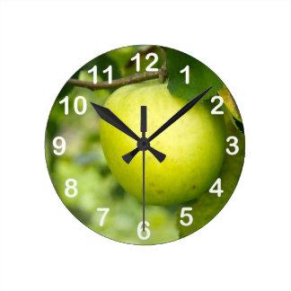 Apple verde en una rama de árbol relojes