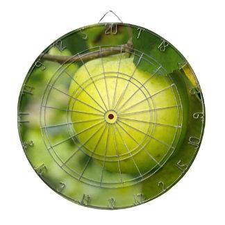 Apple verde en una rama de árbol tablero de dardos