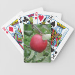Apple y hojas