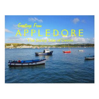 Appledore, Devon Post Cards