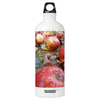 Apples Aluminum Water Bottle