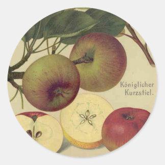 Apples Botanical Vintage Fruit Illustration Classic Round Sticker