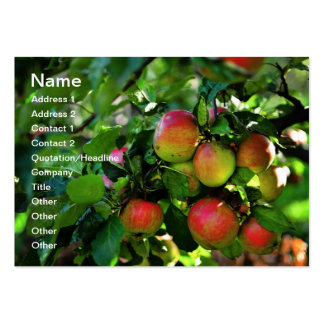 Apples Large Business Cards (Pack Of 100)