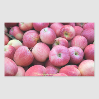 Apples Fresh From The Orchard Rectangular Sticker