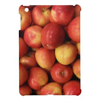 Apples iPad Mini Cases