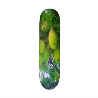 Apples on a tree skate board decks