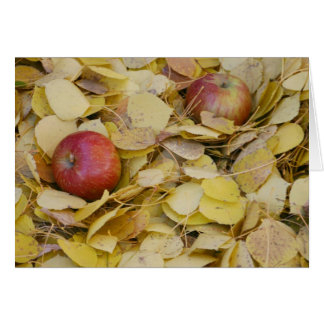 Apples on the ground card