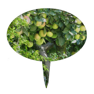 Apples on tree branches and pomegranate tree cake topper
