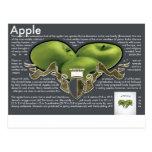 Apples Postcard Cartões Postais