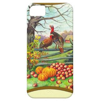 Apples, pumpkins and turkeys iPhone SE/5/5s case