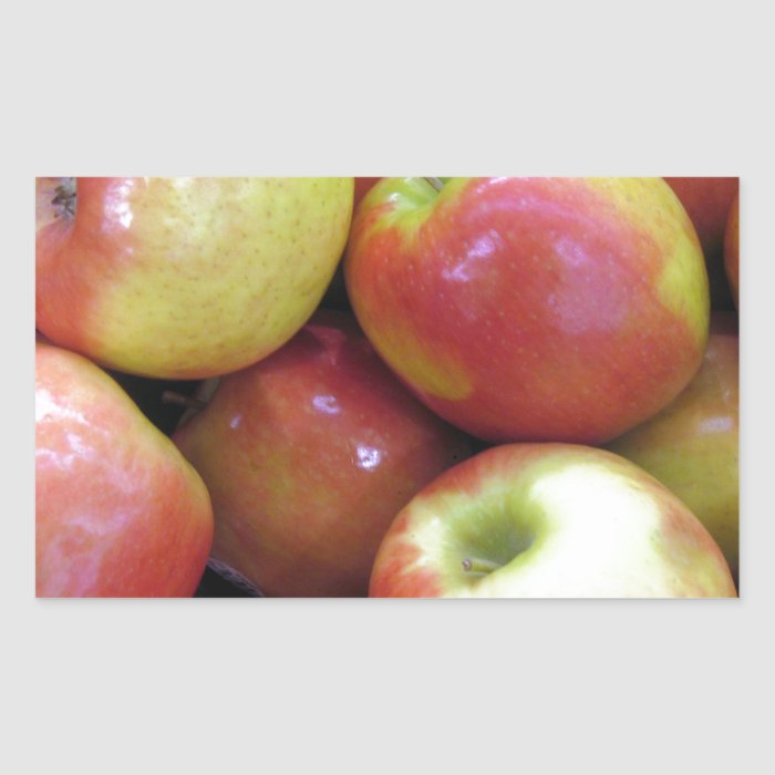 Apples Rectangular Sticker