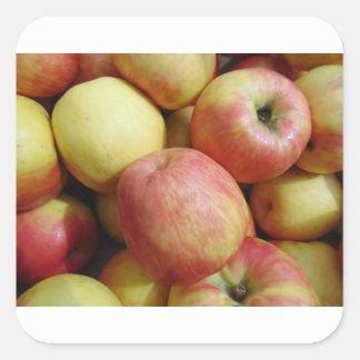 Apples Square Sticker