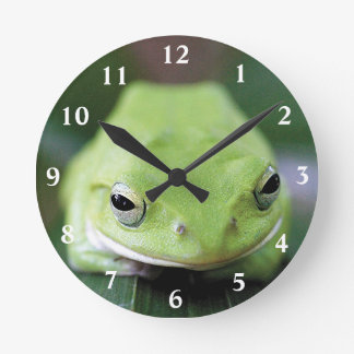 Applying clock of shiyuregeruaogaeru, No.02