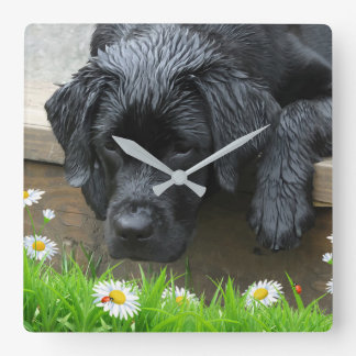 Appreciate the Little Things - Black Labrador Square Wall Clock