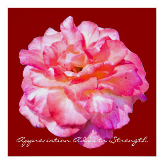 Appreciation Adds to Strength Pink Rose Art Print