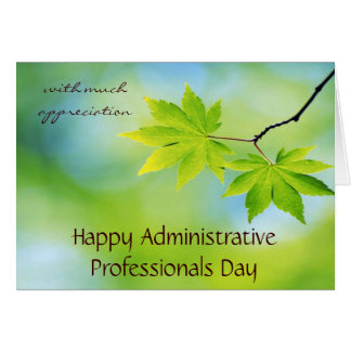 Appreciation for Administrative Professionals Day Stationery Note Card