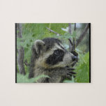 Apprehensive Raccoon - Jigsaw Puzzle