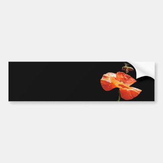 Approach on poppy flower bumper sticker