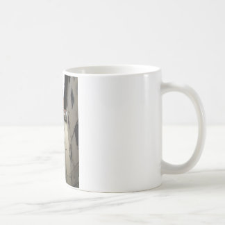 Approaching Basilica Coffee Mug