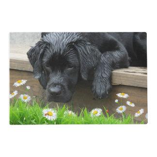 Aprecie las pequeñas cosas - Labrador negro Salvamanteles