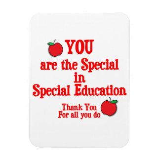 Aprecio de la educación especial imán de vinilo
