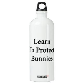 Aprenda proteger conejitos